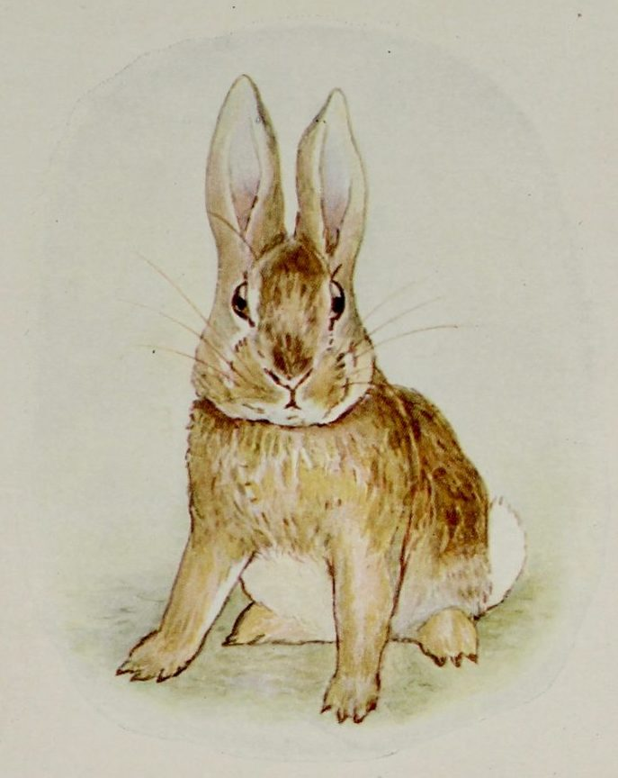 Beatrix Potter: The Story of a Fierce Bad Rabbit, c1916. £150