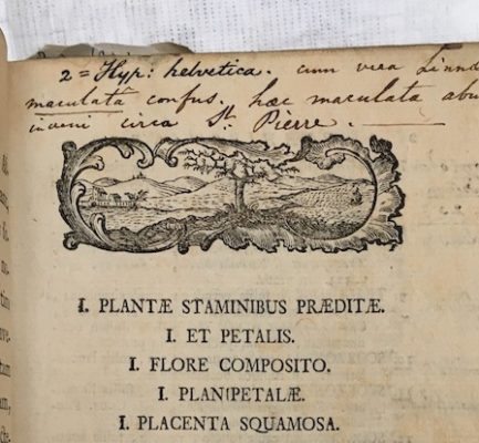 Our birthday fundraiser for The Linnean Society: restoring a botanical book from 1769