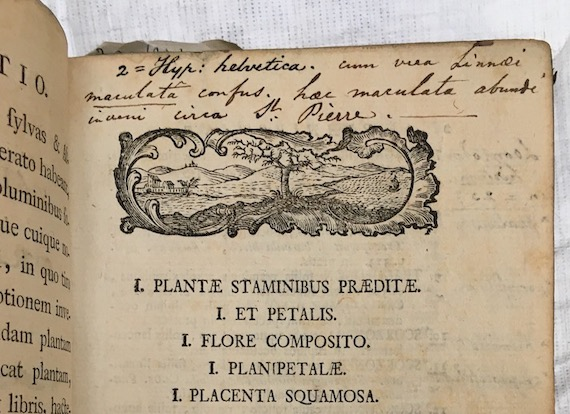 Our birthday fundraiser for The Linnean Society: restoring botanical books