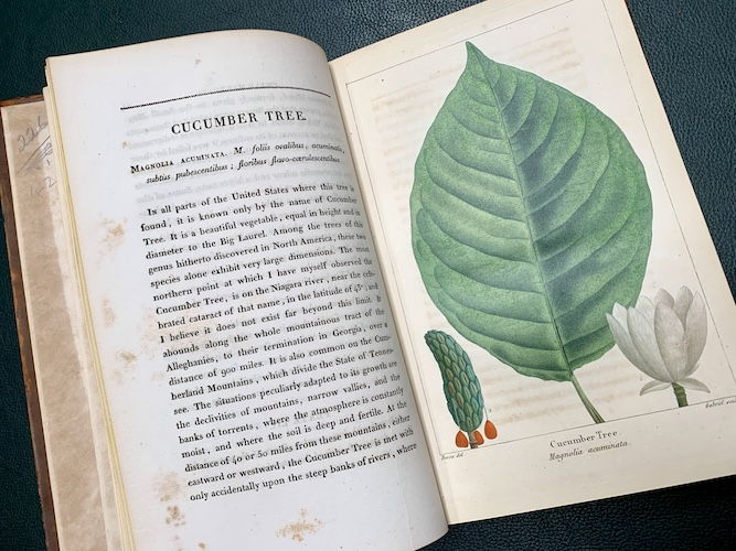 Good news: Update on our Linnean Society book adoption